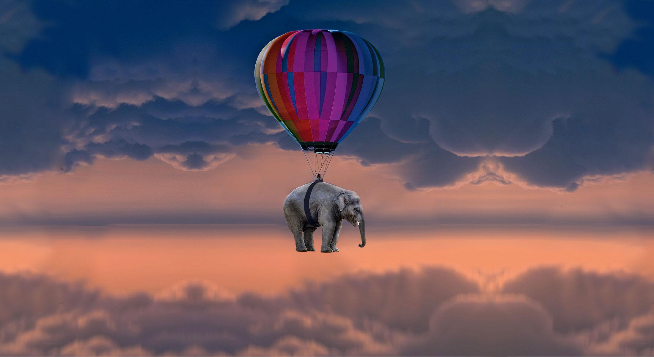 MCSH Veranstaltung: (Wie) lernen Elefanten fliegen? Digitale Transformation in deutschen Industrie-Unternehmen